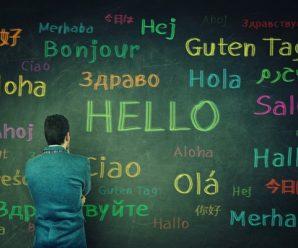 10 Aplikasi Belajar Berbagai Bahasa Terbaik Di Android