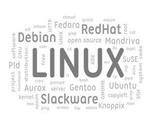 6 Cara Berkontribusi Dalam Pengembangan Sistem Operasi Linux